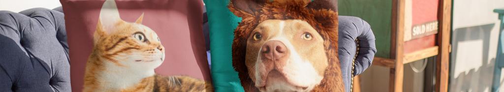 Haustiere Bilder drucken von Ihrem geliebten