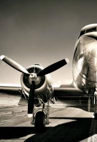 vintage airplane on a runway
